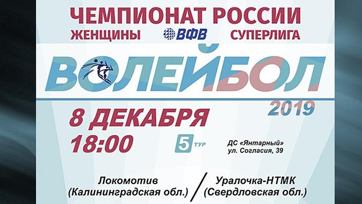Суперлига волейбол Калининград