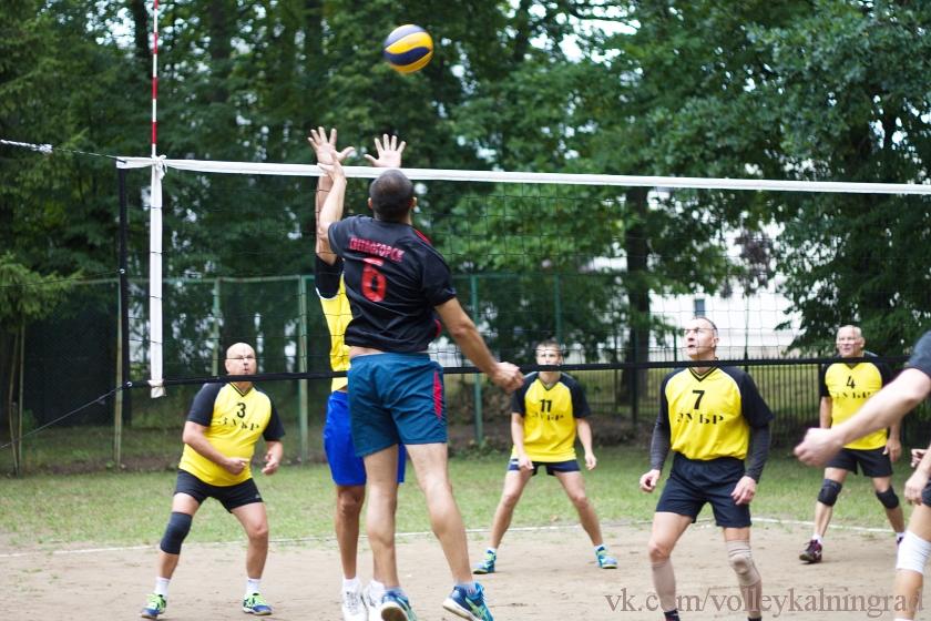 парковый волейбол день физкультурника